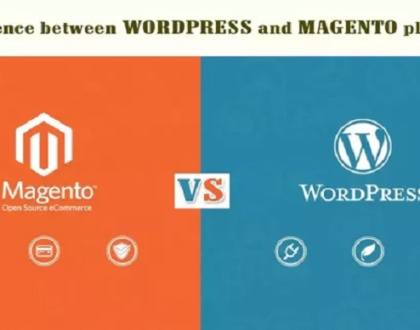 Comparison between Magento Vs WordPress E-Commerce Websites